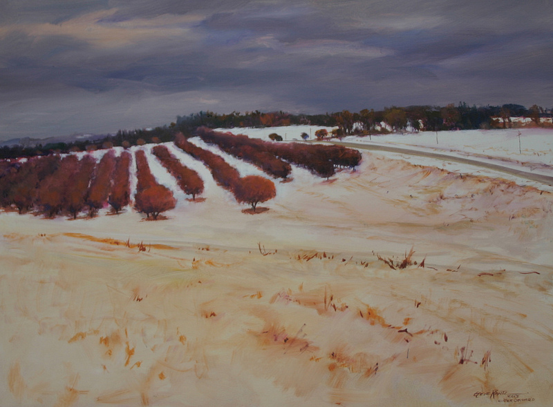 winter orchard 30 x 40 oil  S O L D