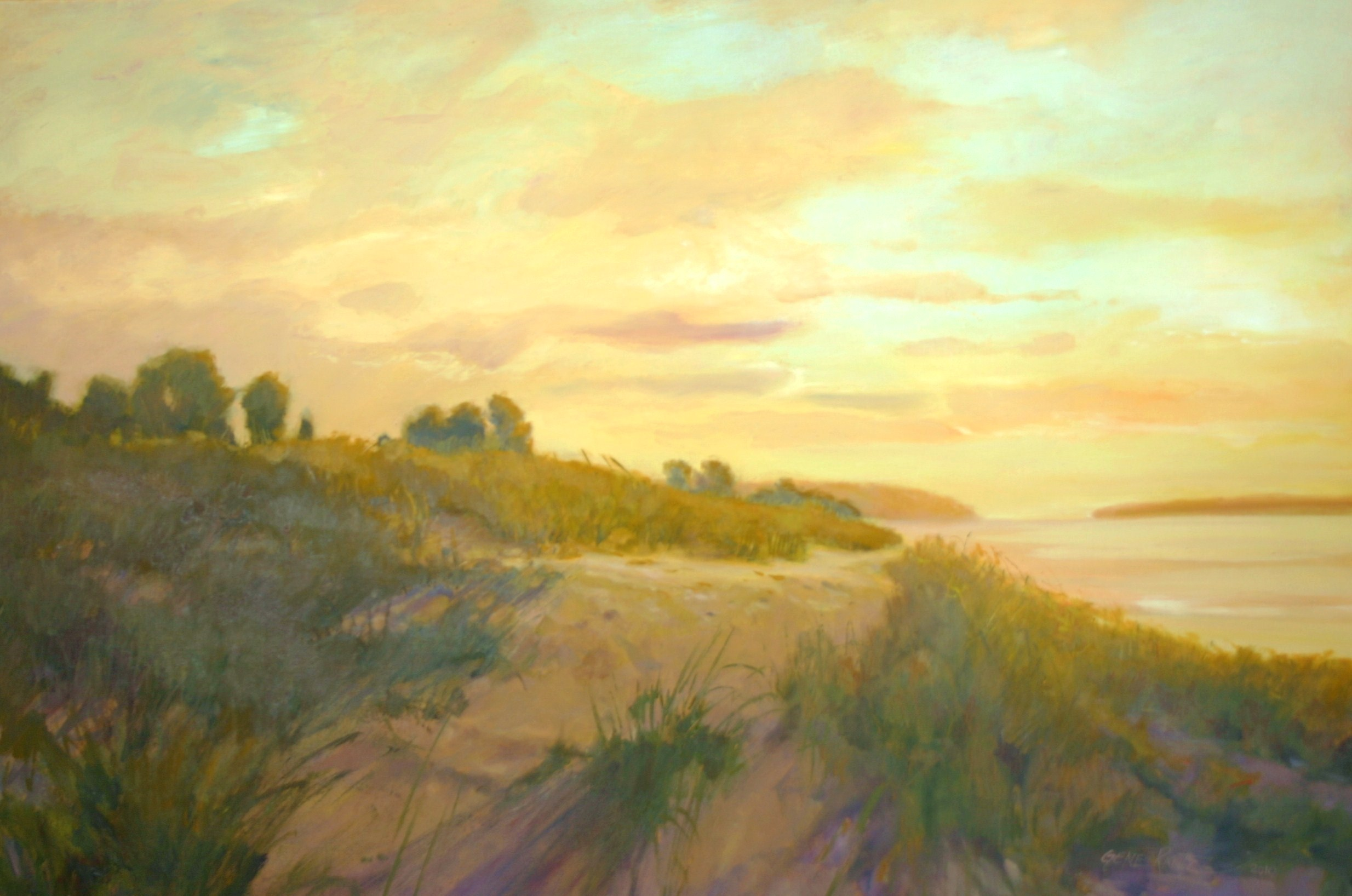 dune vista 24 x 36 oil on canvas