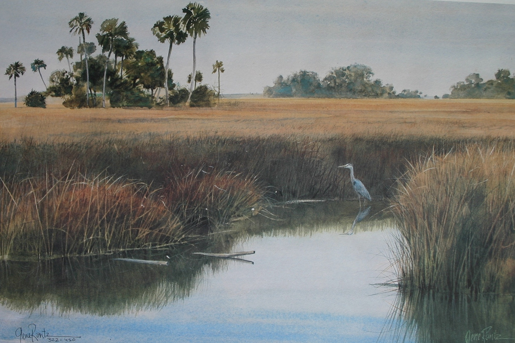 heron in sawgrass 13 x 19.5 Litho limited edition print