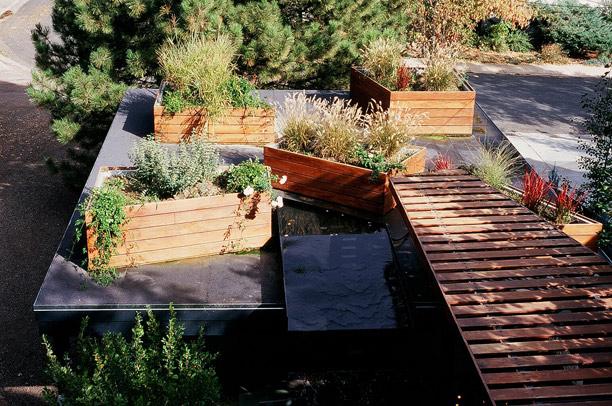 d-container-garden.jpg