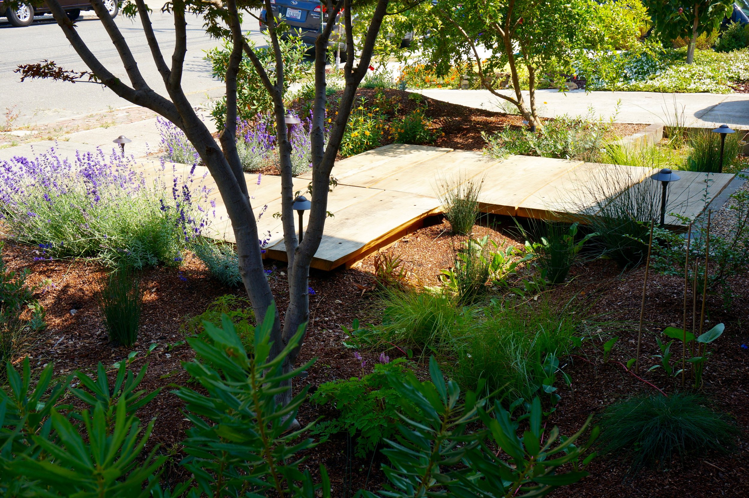 Resilient + Contemplative Spaces -