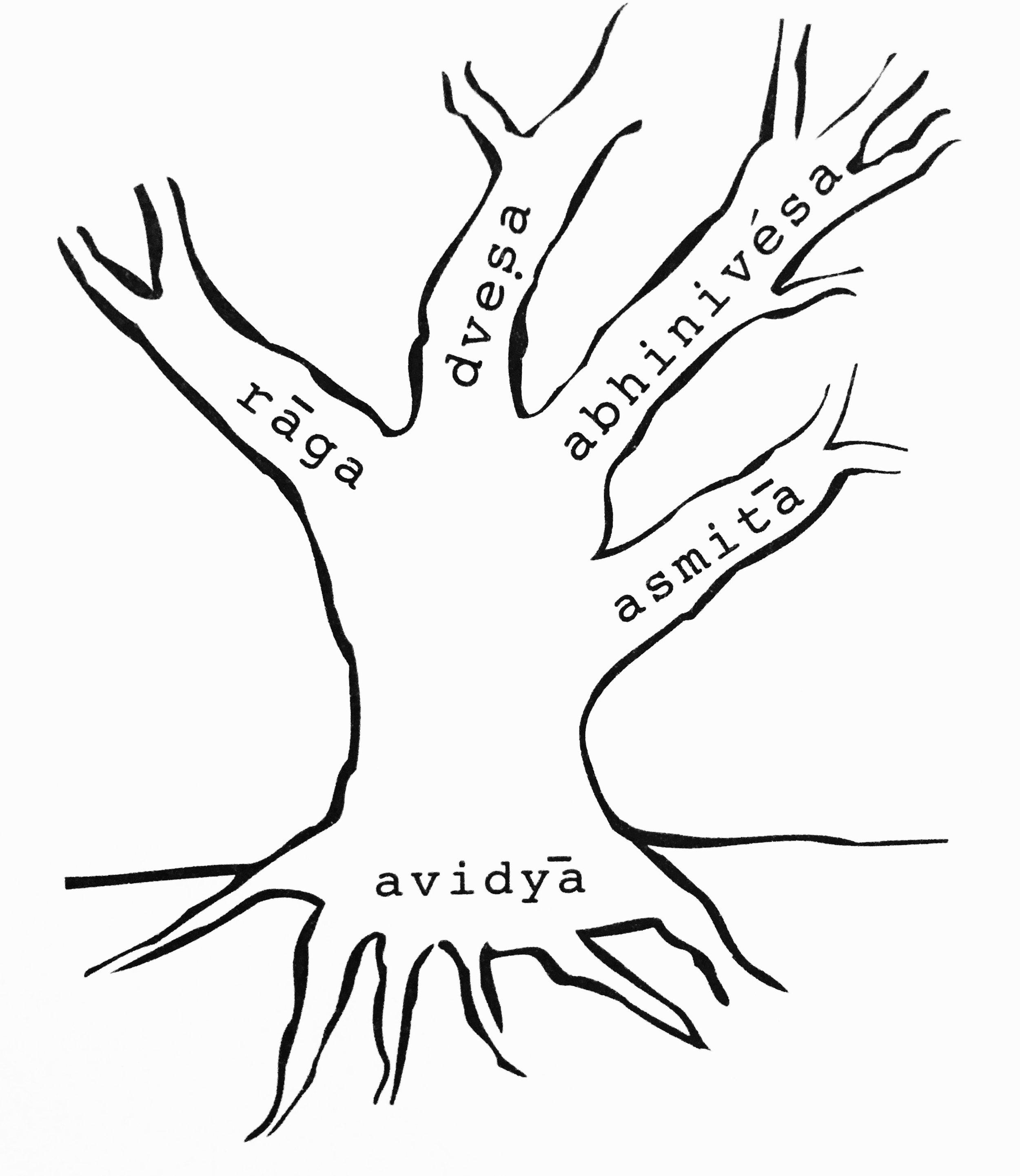 Illustration of the kleshas from TKV Desikachar's  The Heart of Yoga