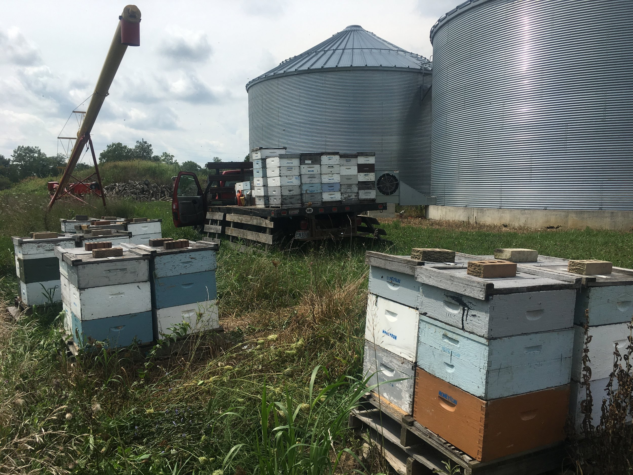 They'll be using those grain bins eventually... honey harvest beats grain harvest by two months.