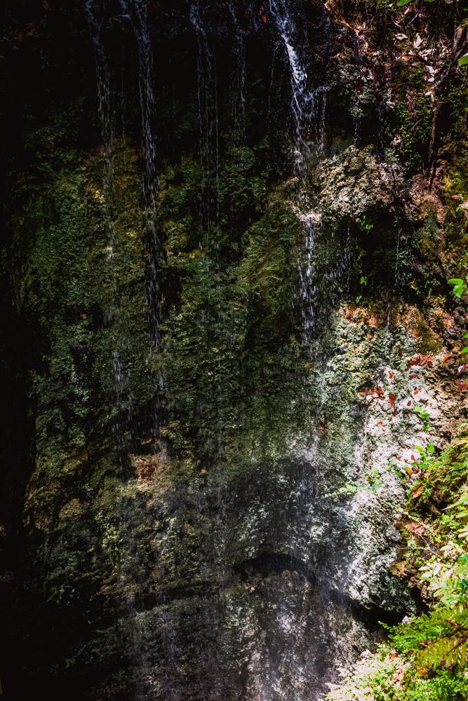 Falling Waters Park-68.jpg