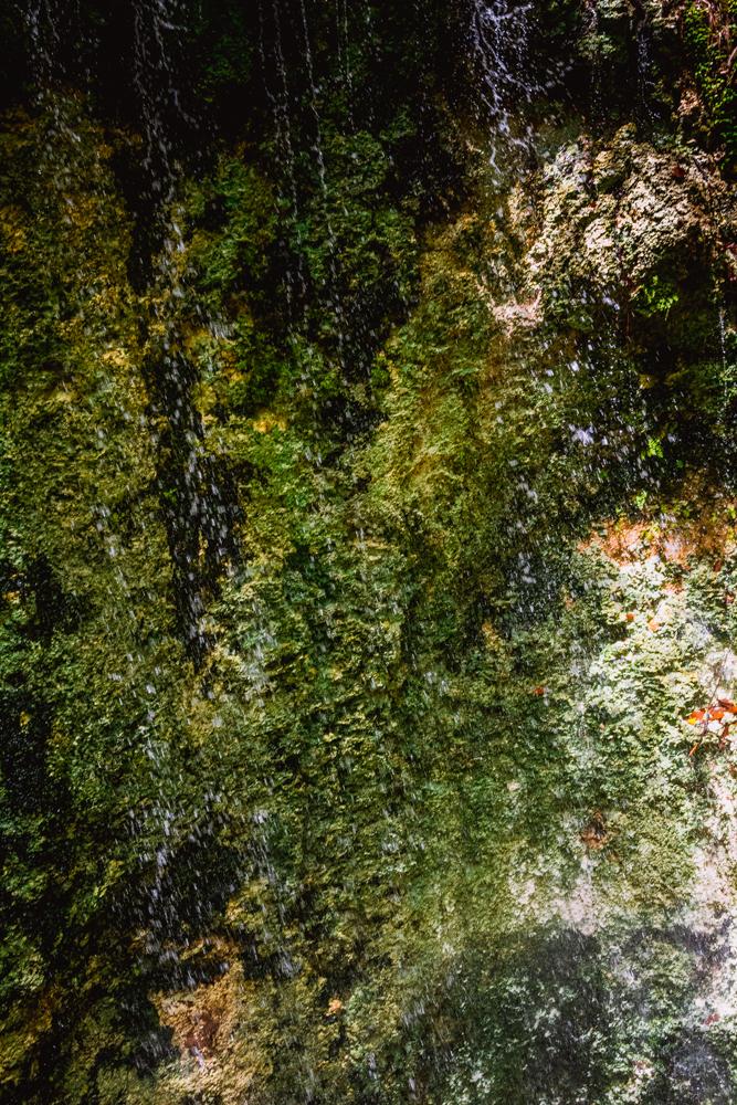 Falling Waters Park-77.jpg