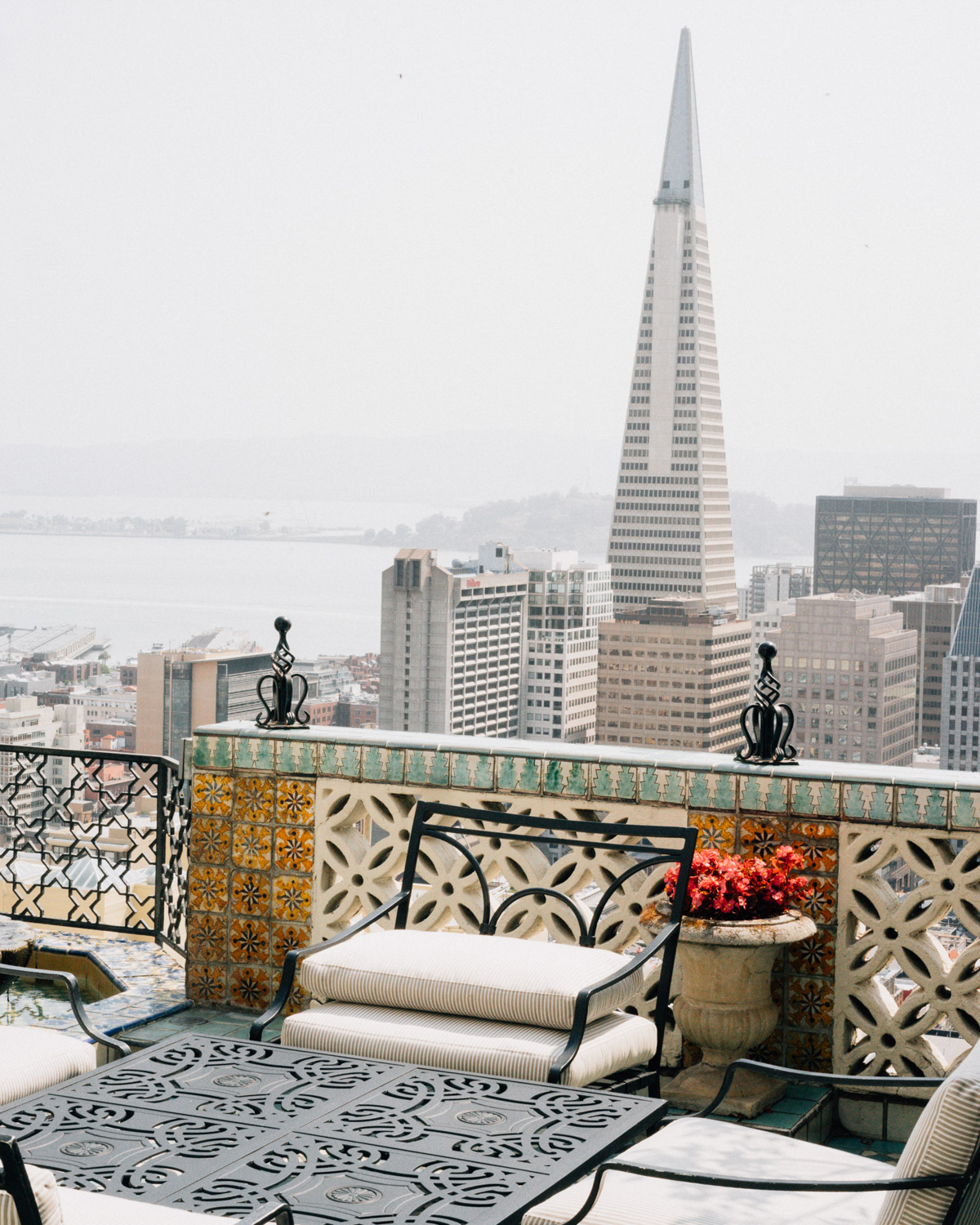SashaZvereva-@sanfrancisco-photographs-33.jpg