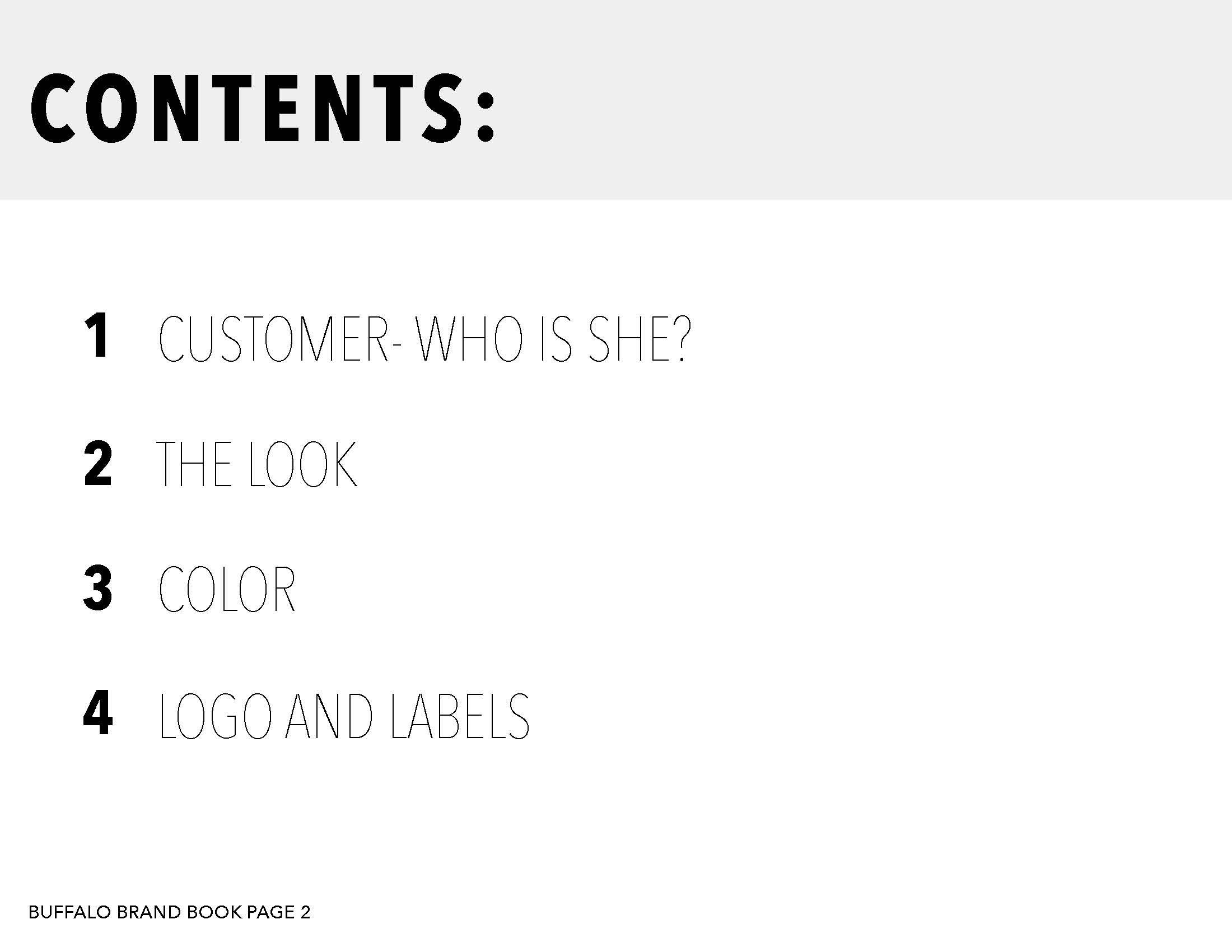 Buffalo brand book-summary_Page_02.jpg