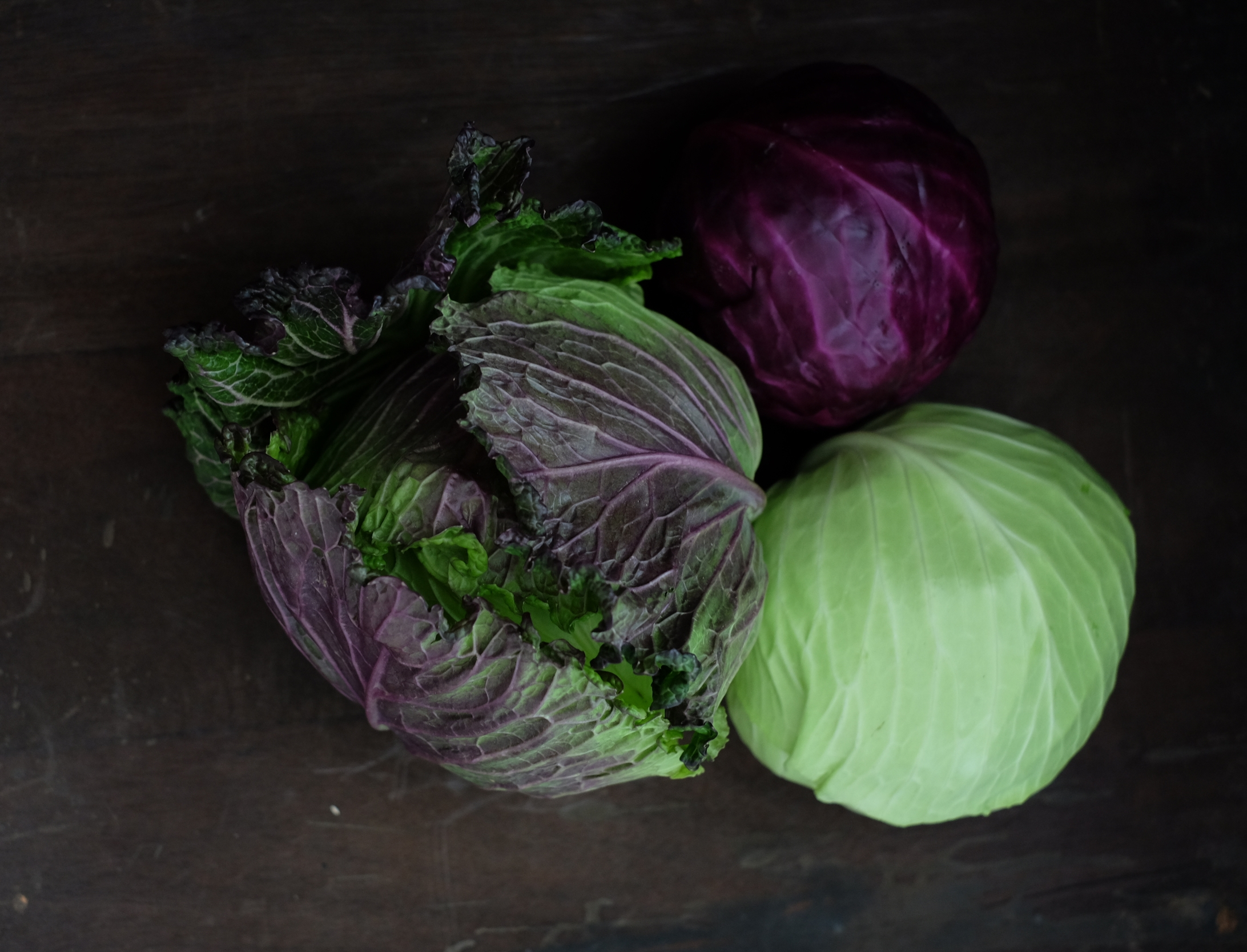 january is cabbage