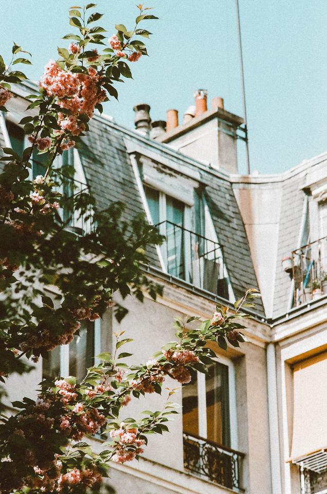 ParisBlog (85 of 88).jpg