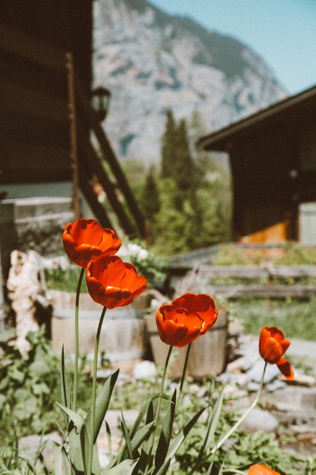 SwitzerlandBlog (31 of 117).jpg