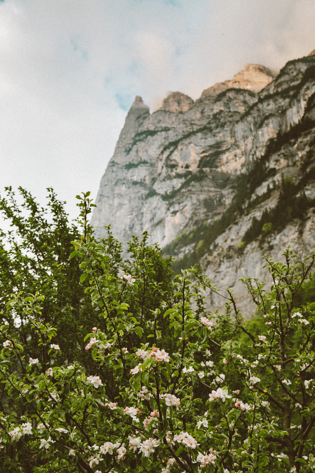 SwitzerlandBlog (37 of 117).jpg