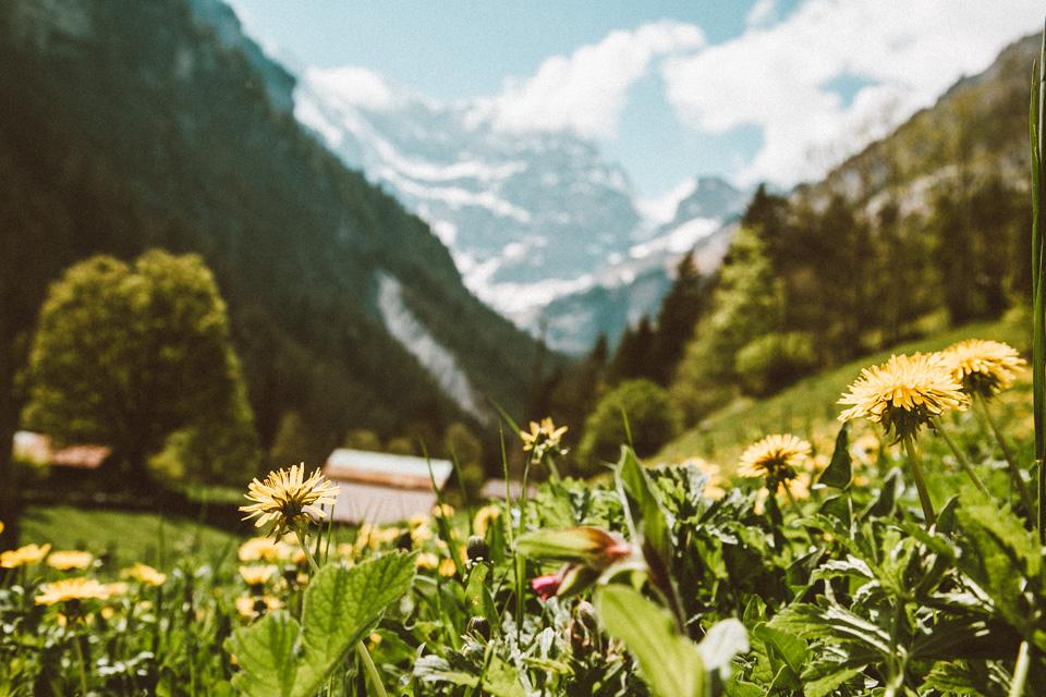 SwitzerlandBlog (42 of 117).jpg