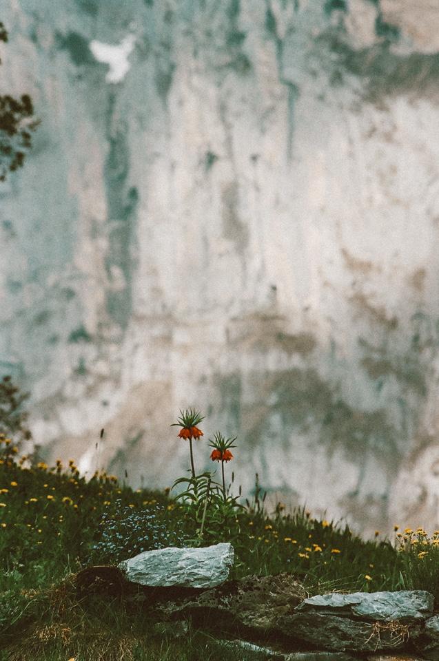 SwitzerlandBlog (67 of 117).jpg