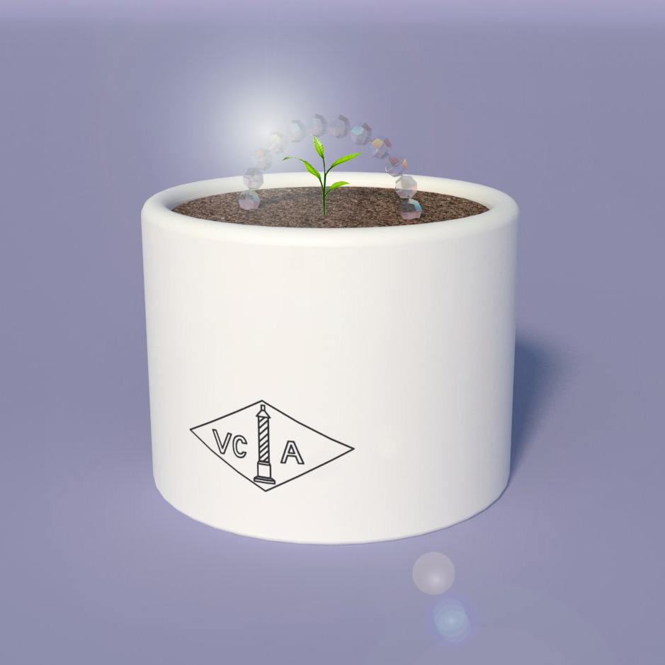 pot sprout.jpg