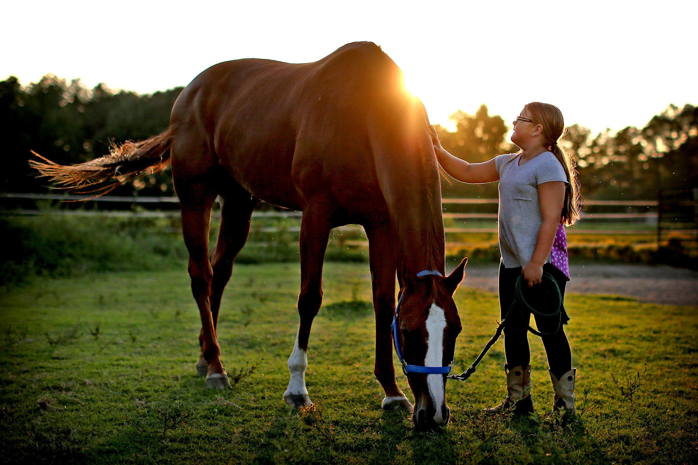 091915_HorseFeed01.JPG
