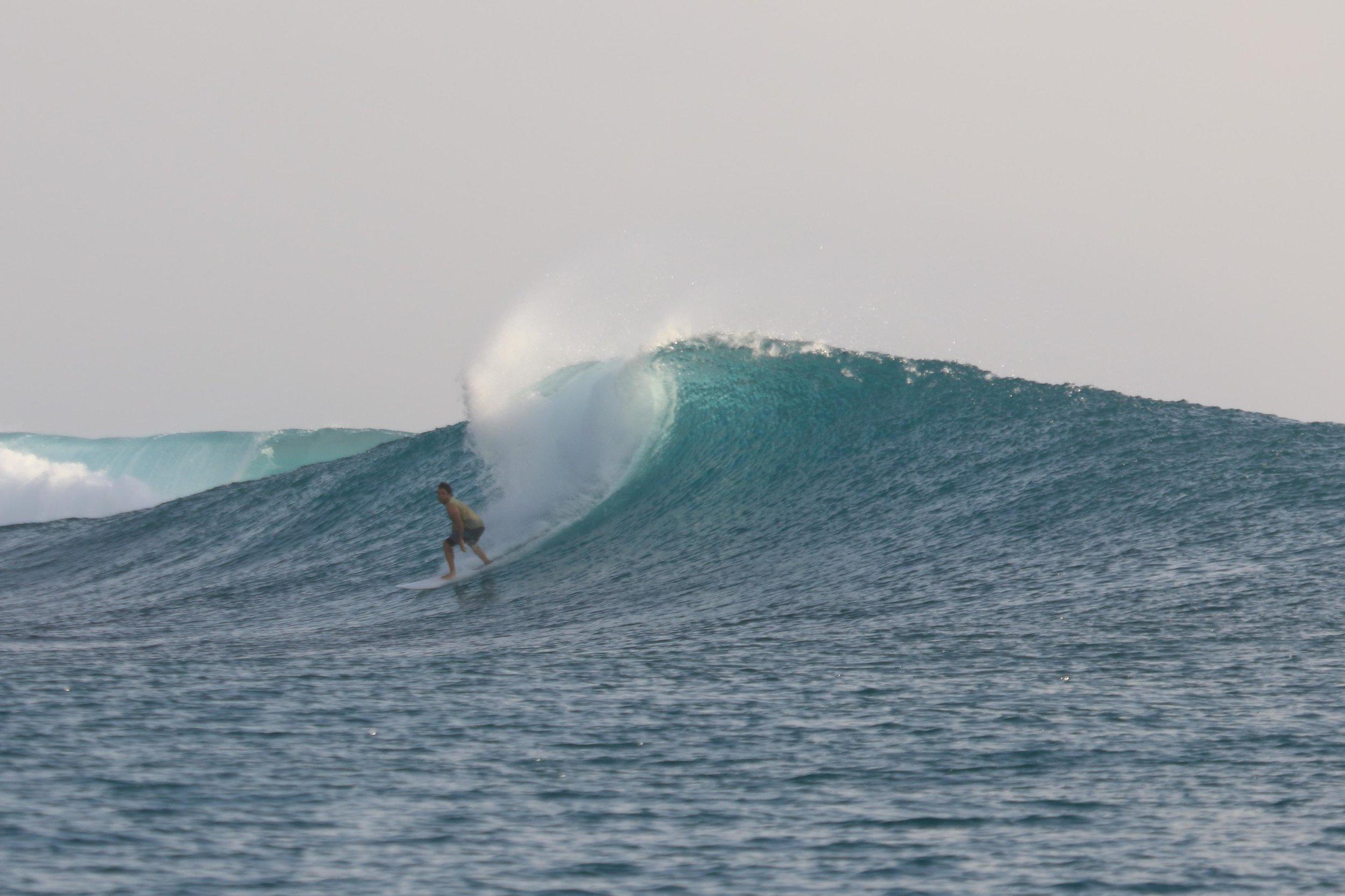 Mentawai Barrenjoey-5.jpg