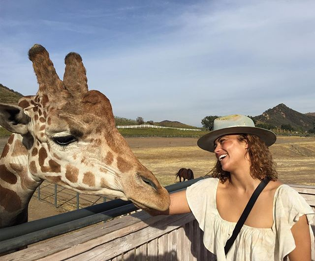 Celeb sighting in Malibu! #malibuwinesafari @a_giraffe_named_stanley @paulapattonofficial #safari #lalife #animalove #giraffelove #saddlerockranch #paulapatton #hollywoodactress #celebsighting