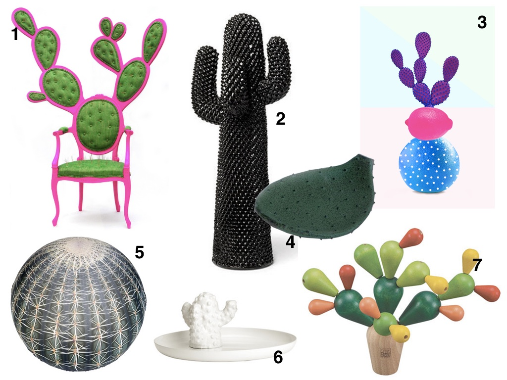 SUCCULENT COLLAGE USE.jpg