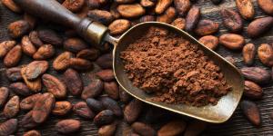 maui cacao