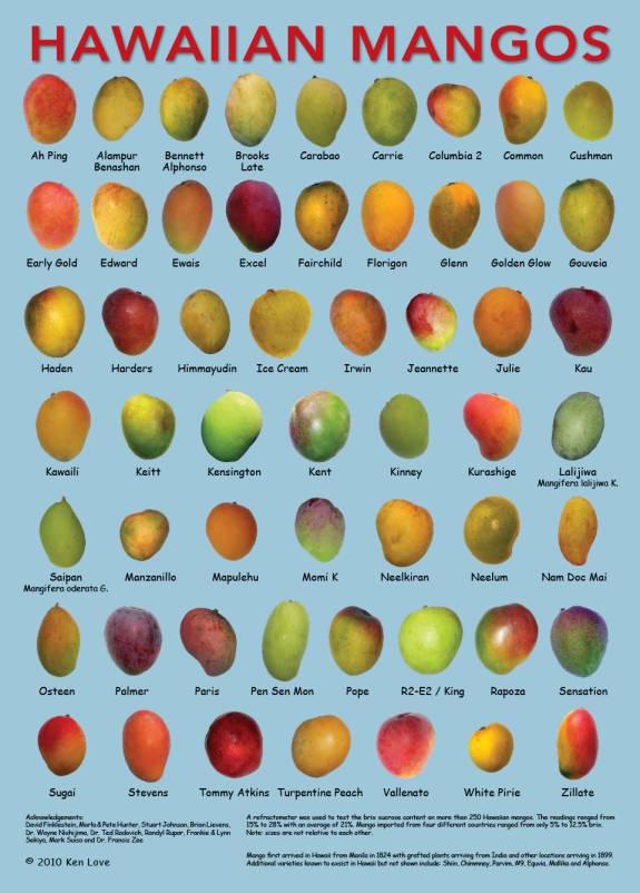 napili farmers market hawaiian mango