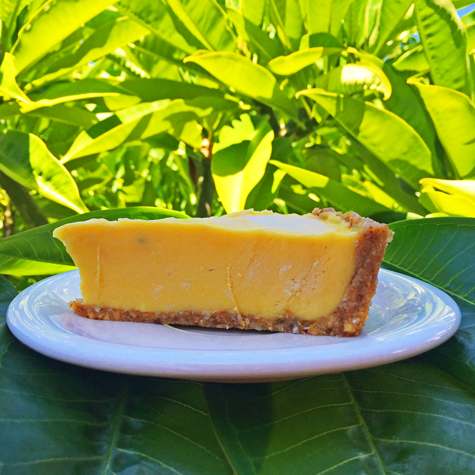 breadfruit pie.jpg