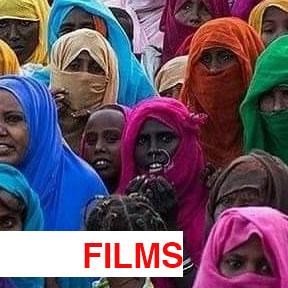 FILMS WEBSITE.jpg