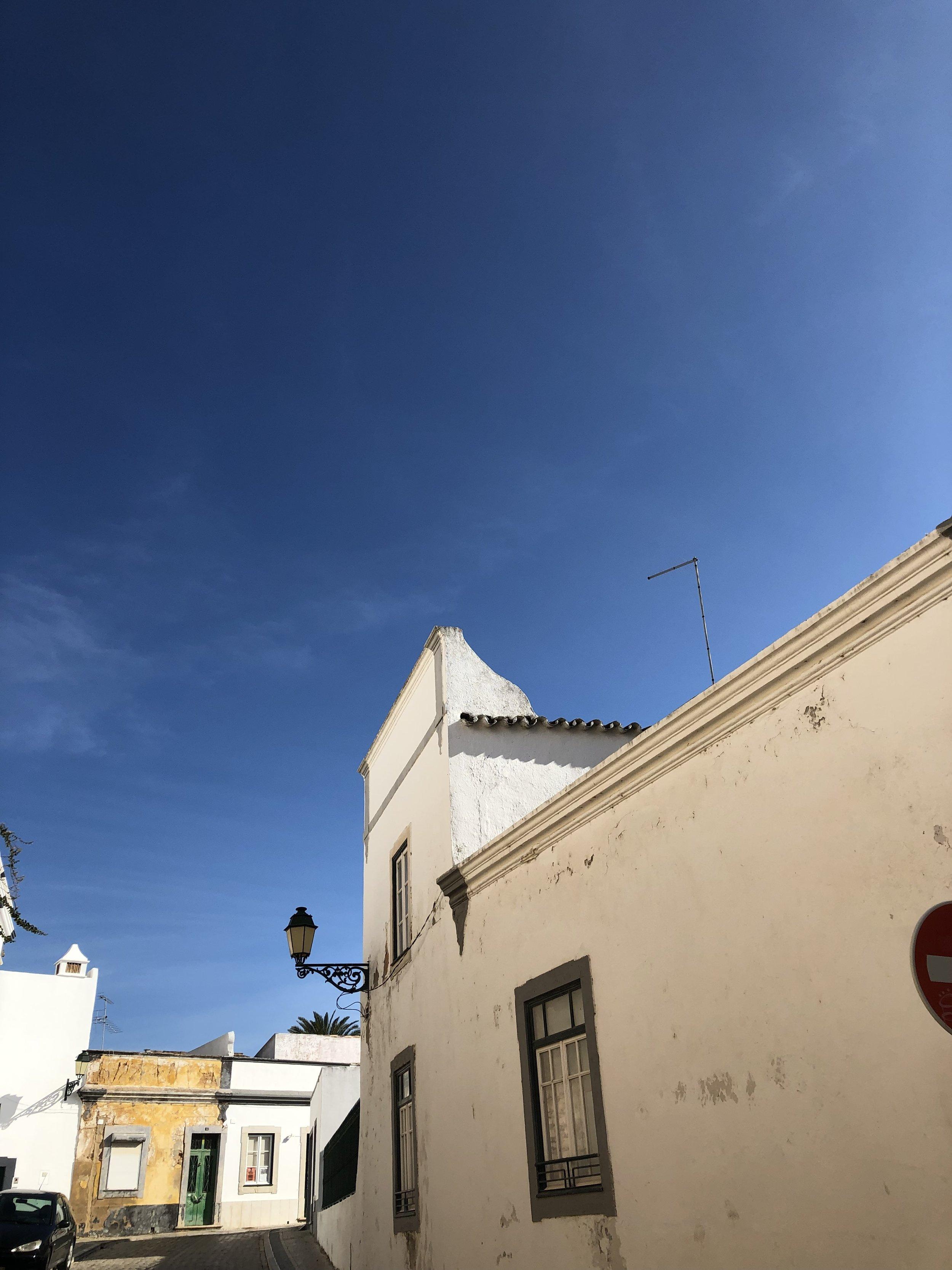 青い空に映える白。