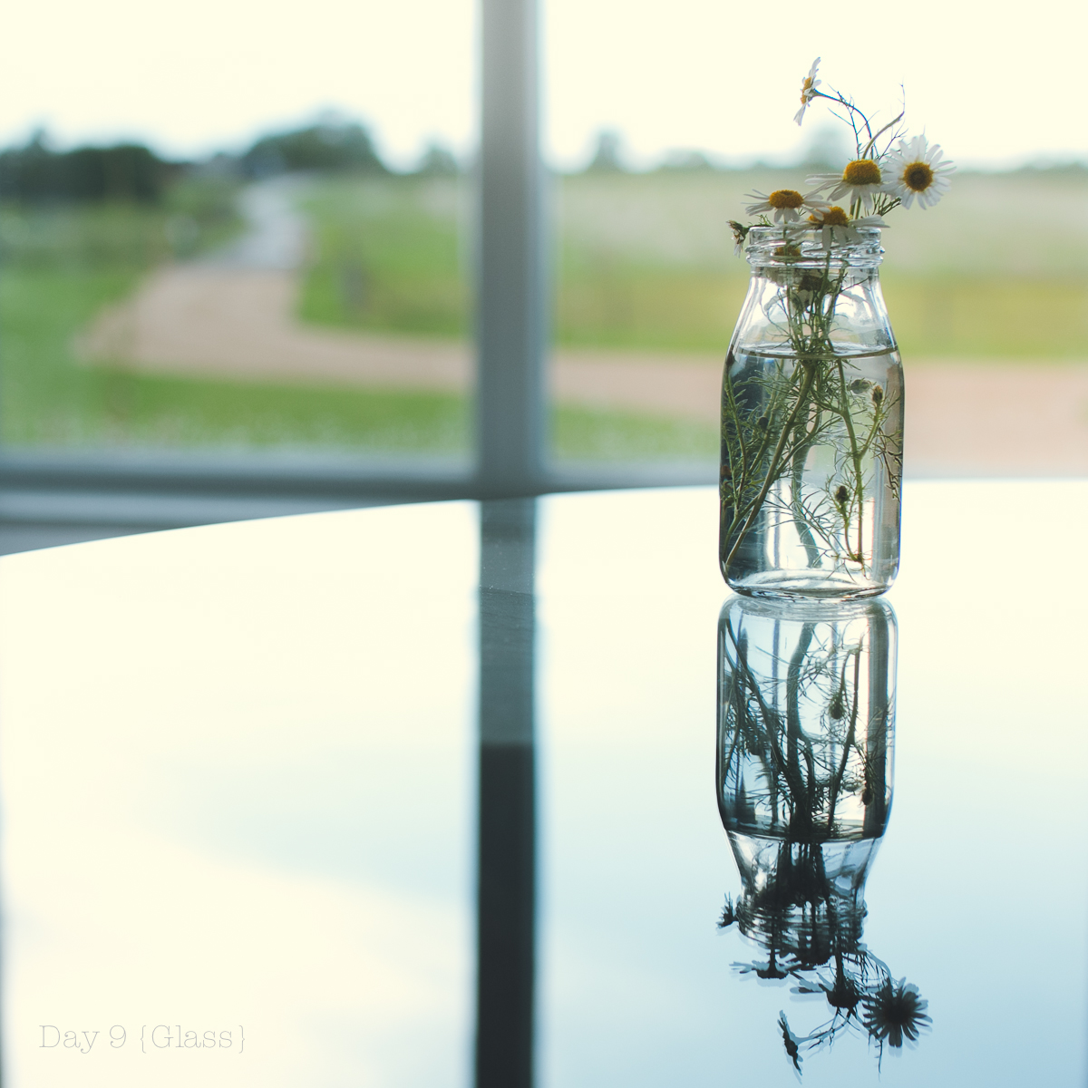 glass-1.jpg