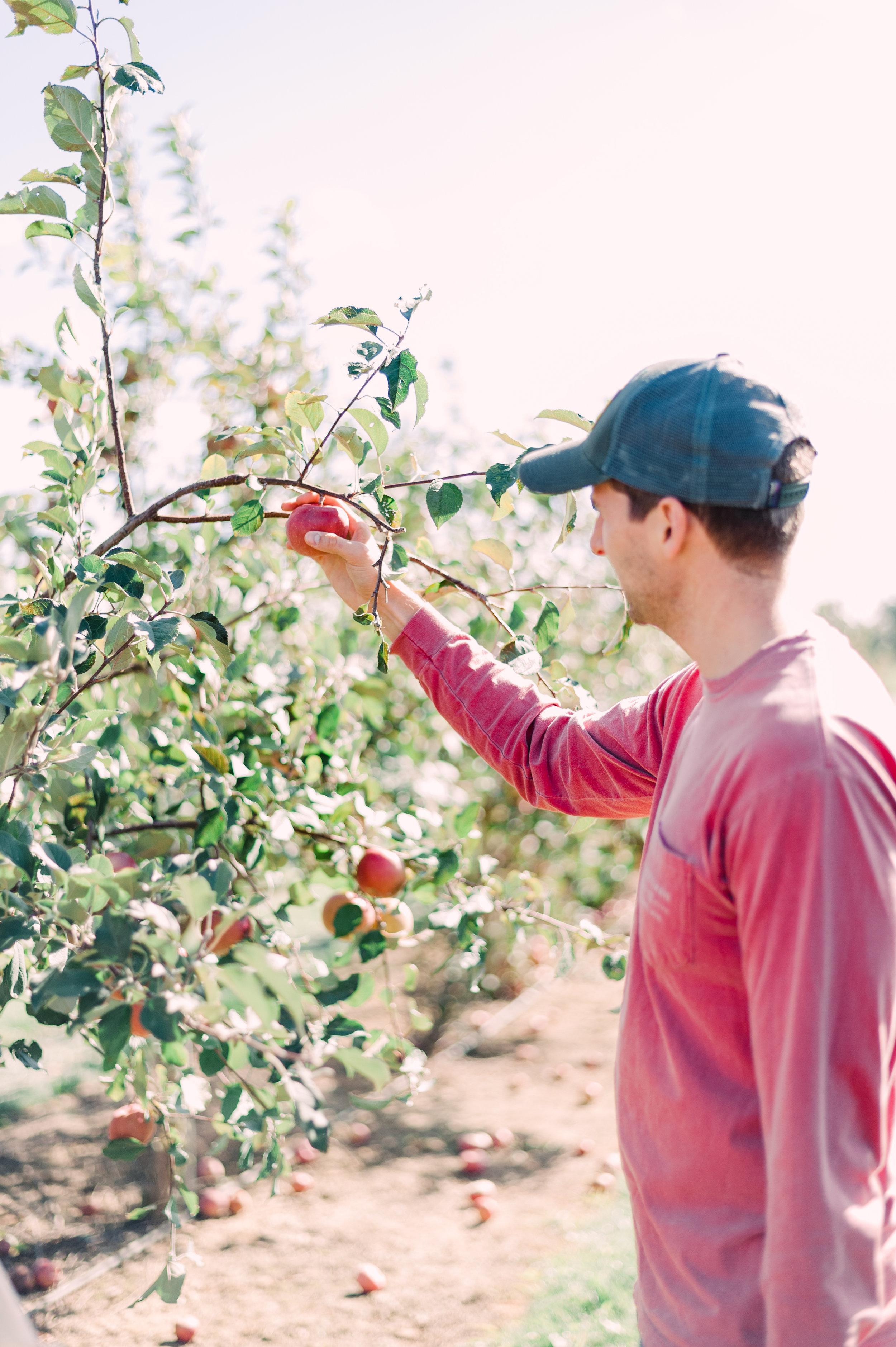 Fall October Huber's Orchard -2.JPG