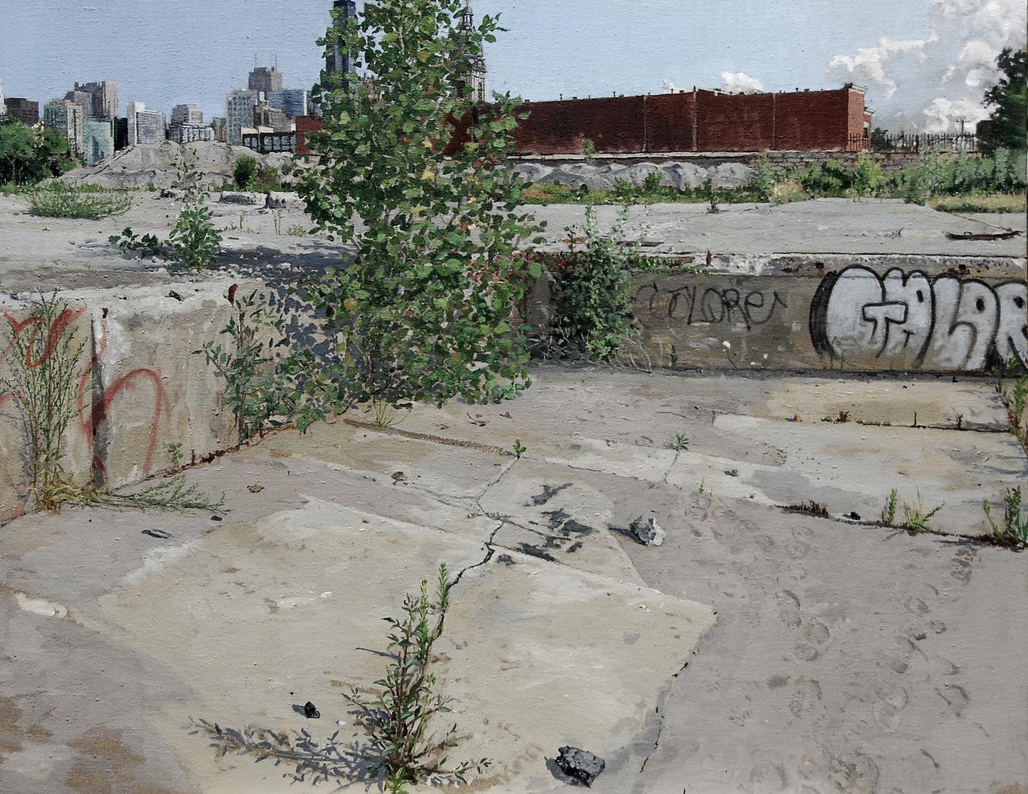 COTTONWOOD, OIL ON LINEN, 36X34'', 2007