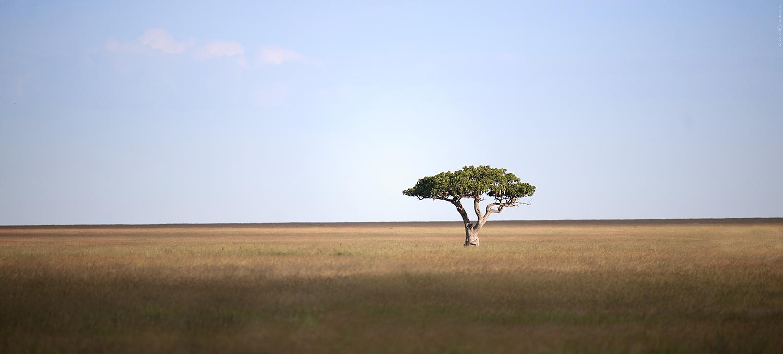 2012 Tanzania - D3X0664a - Internet.jpg