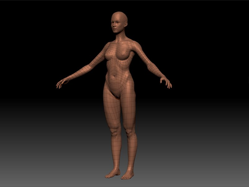 Body mesh for the demon hunter I ll be modeling.jpg