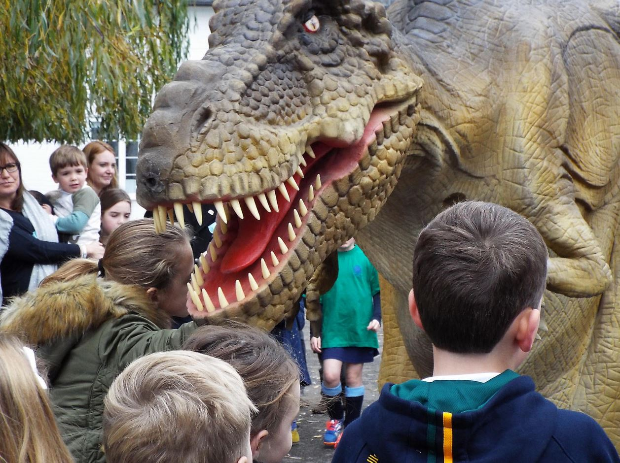 close up of Rex at Cranford House Primary School.jpg
