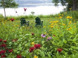 Adirondack Native Plant List
