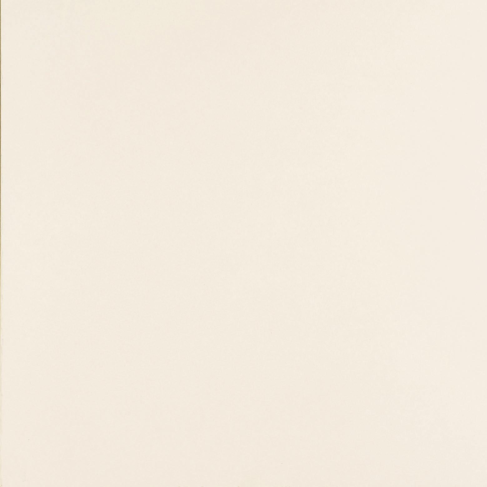 V1224 White (matt)