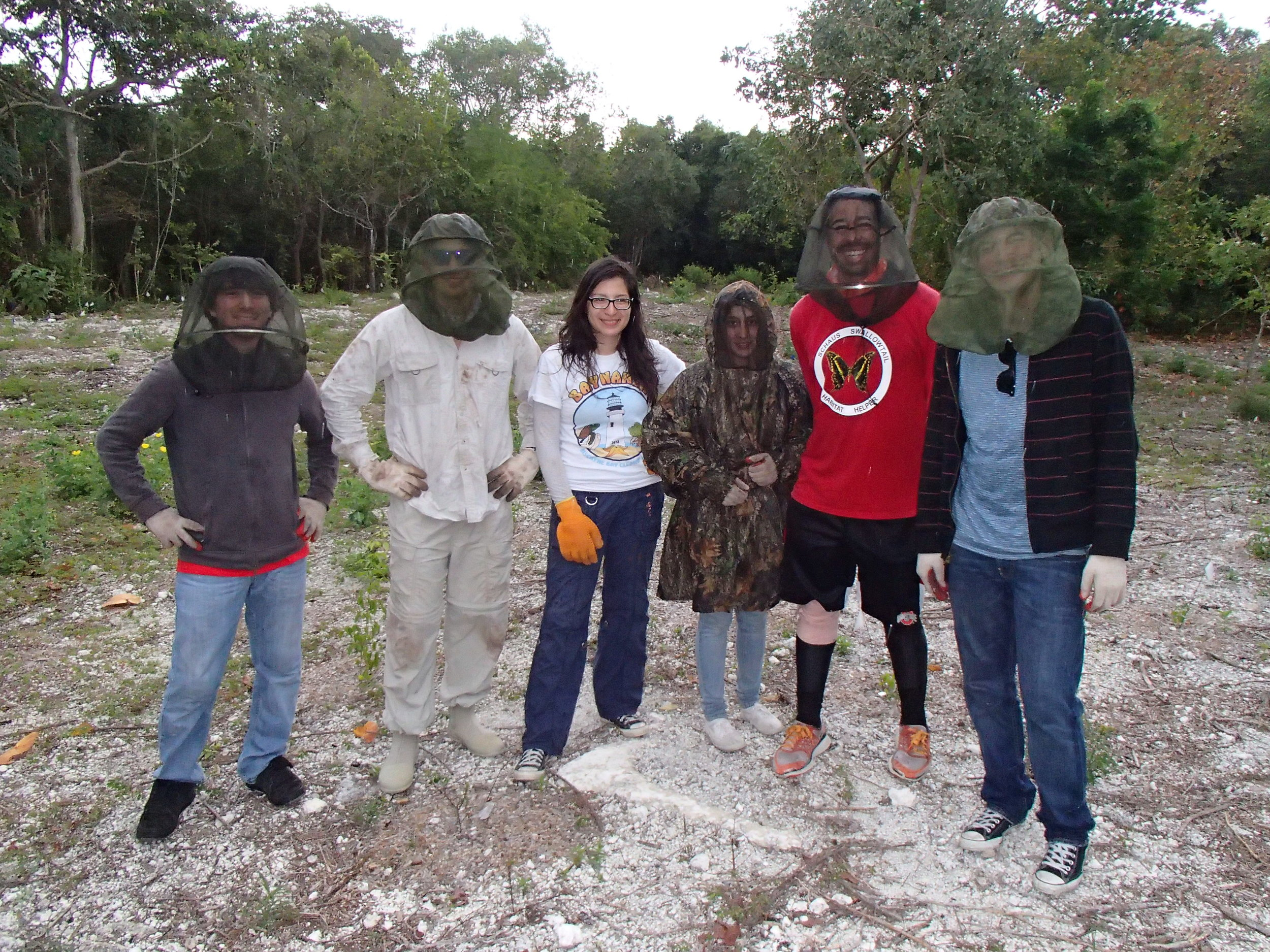 National Park Service staff and volunteers at the main restoration site (Schaus' swallowtail habitat enhancement project) at Elliott Key.