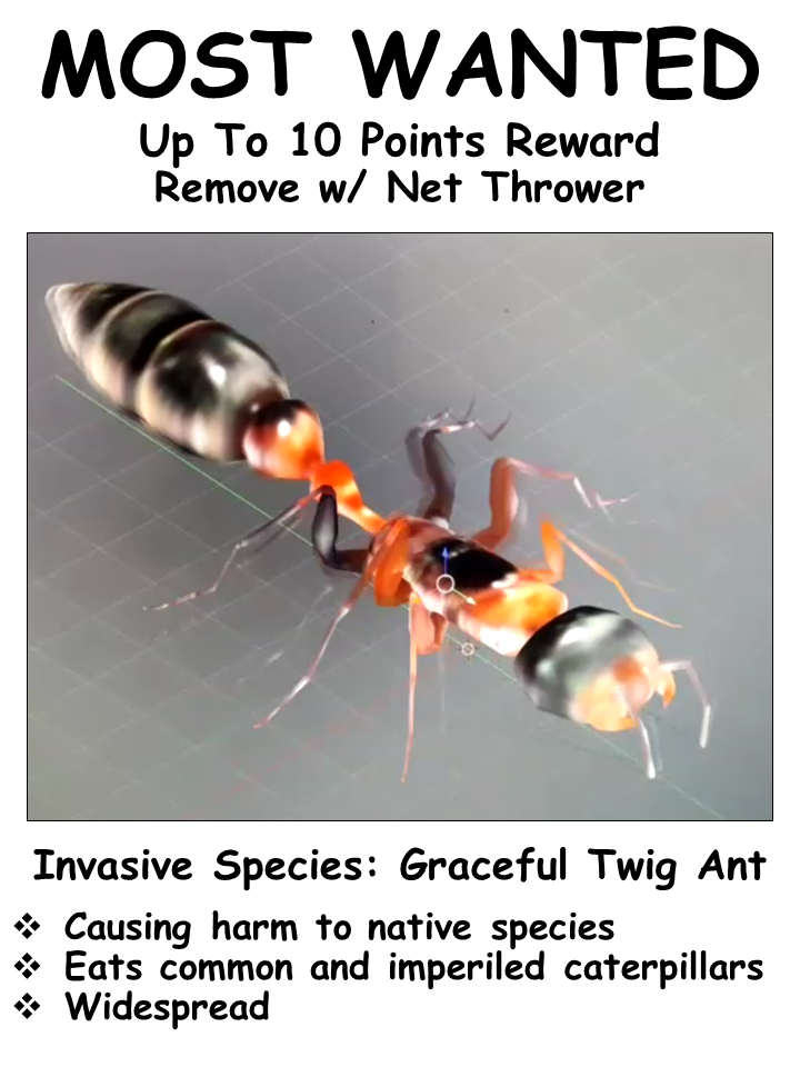 In Butterfly World 1.0, catch and remove graceful twig ants before they eat too many butterflies.