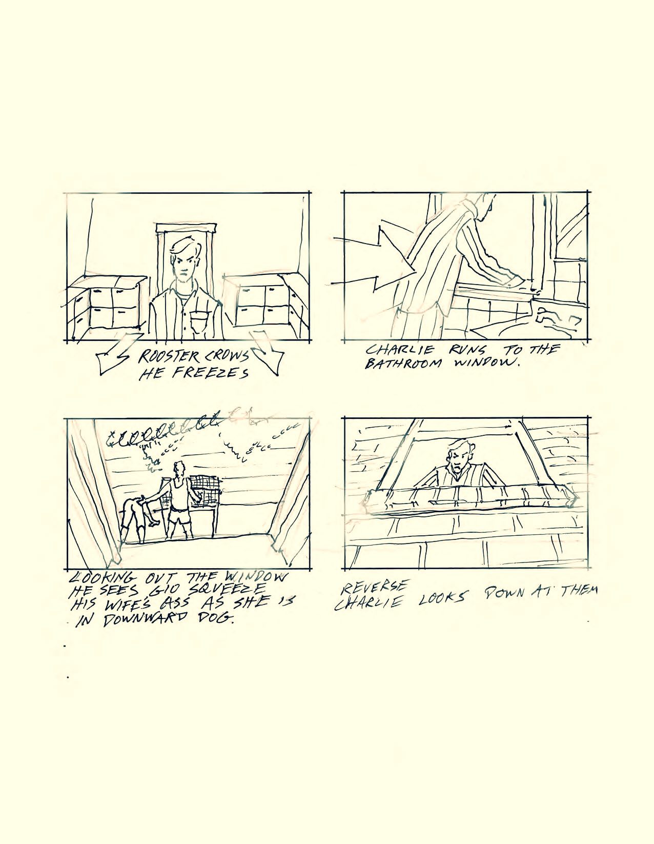 Rooster Storyboards Finished email_Page_03.jpg