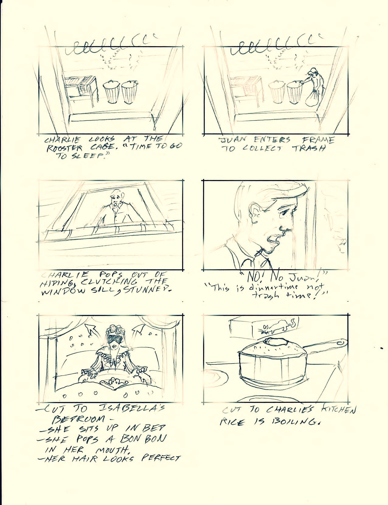 Rooster Storyboards Finished email_Page_21.jpg