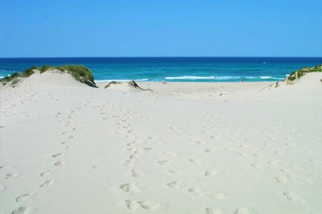 beaches-02.jpg