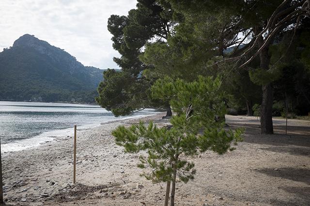 beaches-05.jpg