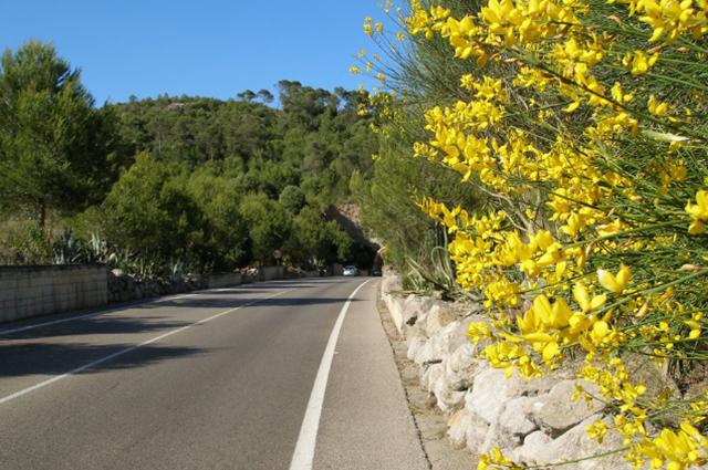 roads-16.jpg