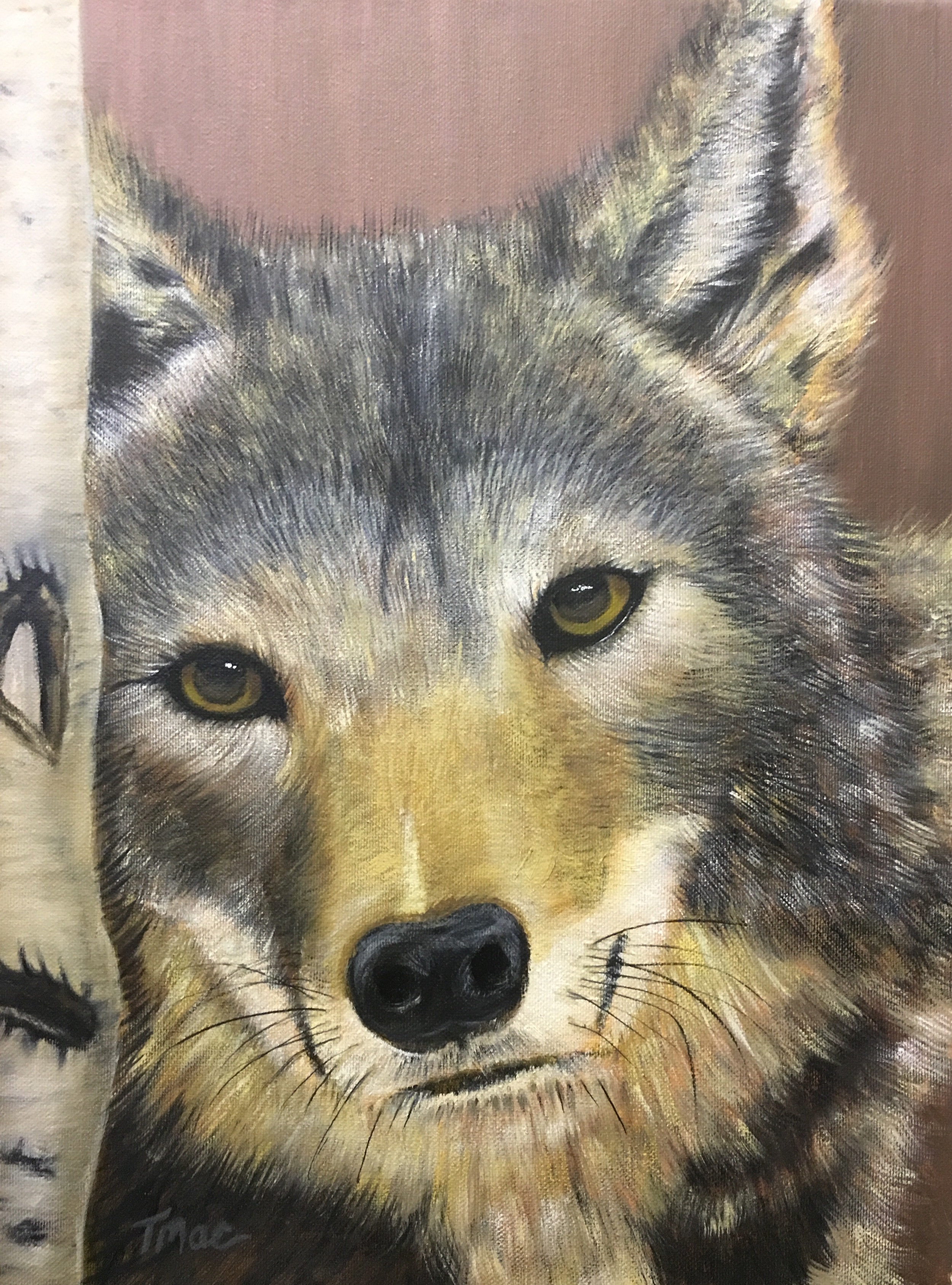 """""""WWW:Watching Waiting Wolf"""" by Teresa McCarthy, 16x14in, oil on canvas (2016), $425 