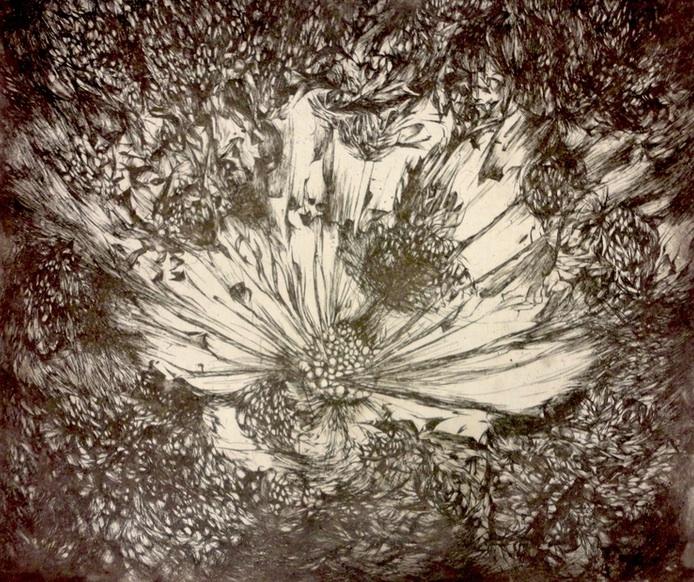 """Exploding Flower"" by Rachel Singel, 16x20in, intaglio on handmade cotton paper (2015)"
