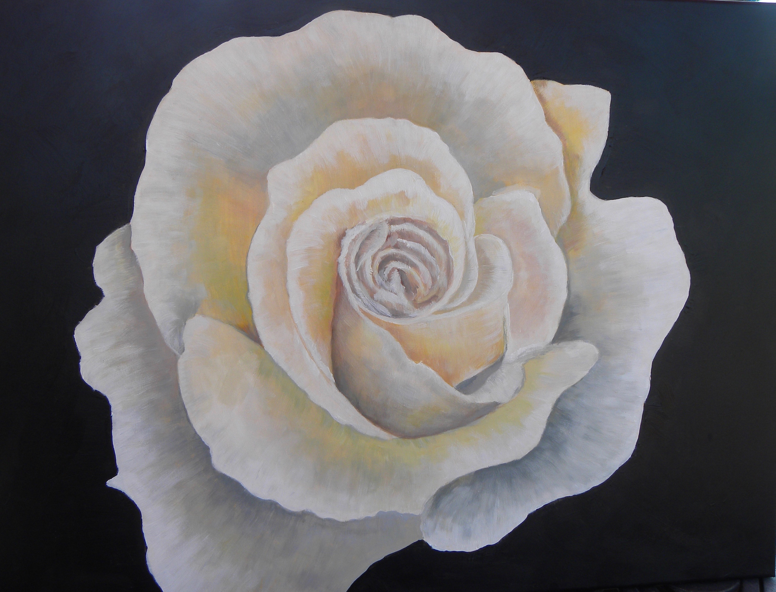 """""""White Rose"""" by Cheryl Buhrman, 18x24in, acrylic on canvas (2017), $250 