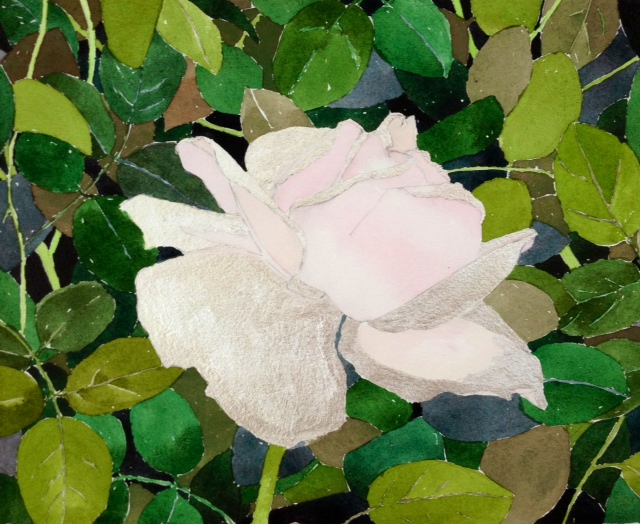 """Rose on Gerardia"" by Gretchen Treitz, 10x12in, watercolor, silverleaf (2015)"