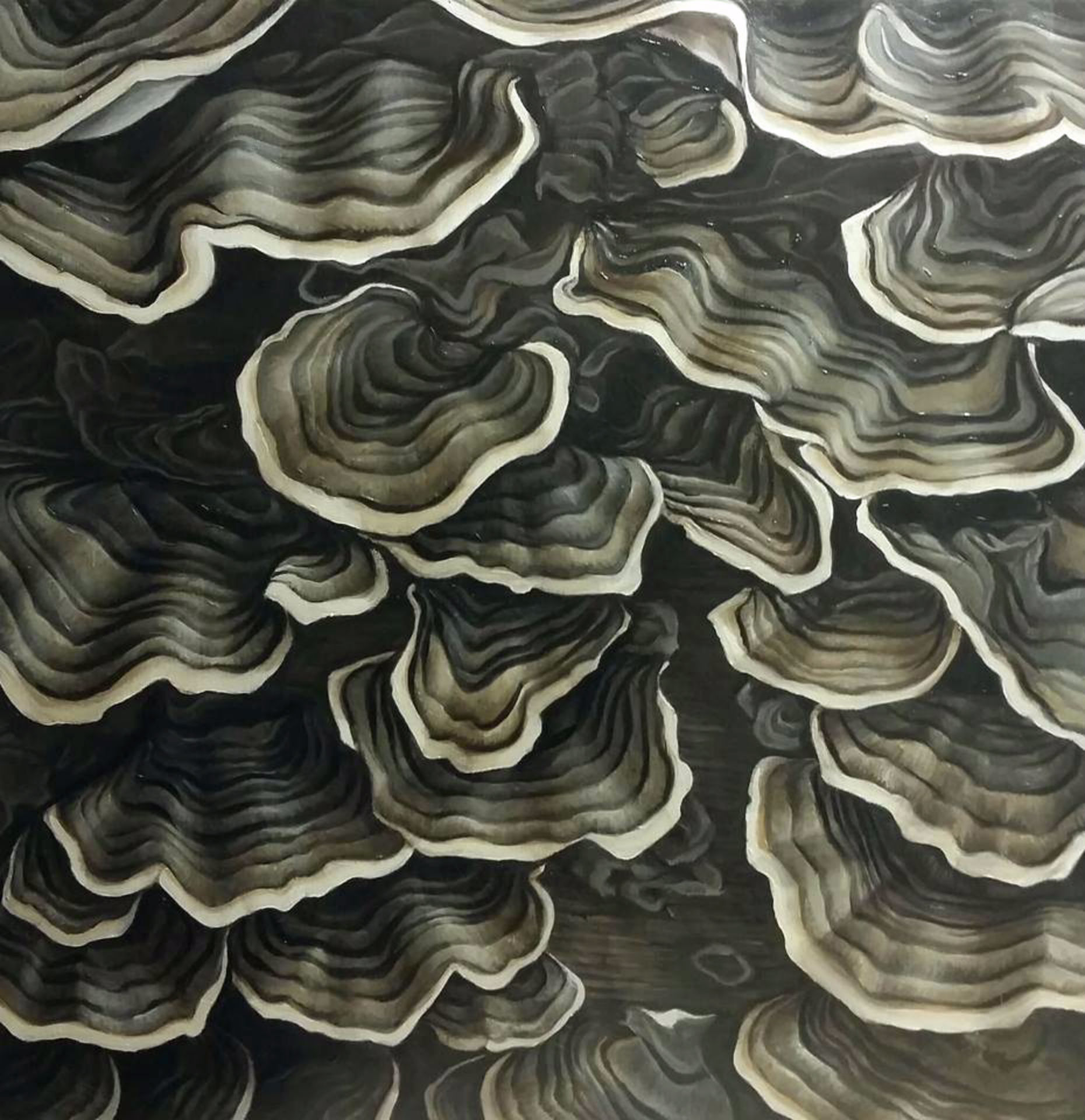 """Turkey Mushroom"" by Devan Horton, 24 x 24in, oil on panel (2017), $800 