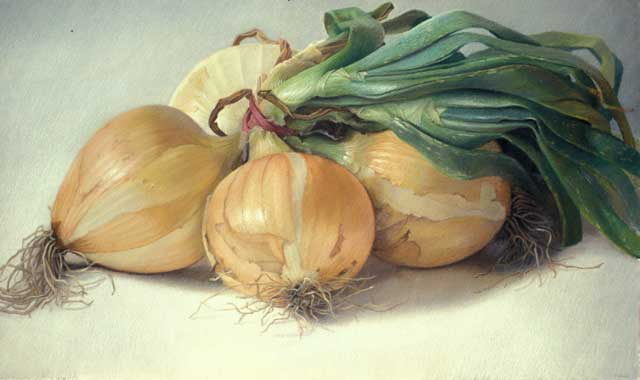 """East Palatka Onions"" by Mary Ann Currier, 1983, 35x59in, Collection of the Metropolitan Museum of Art"