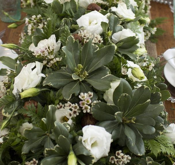 northampton ma wedding event florist