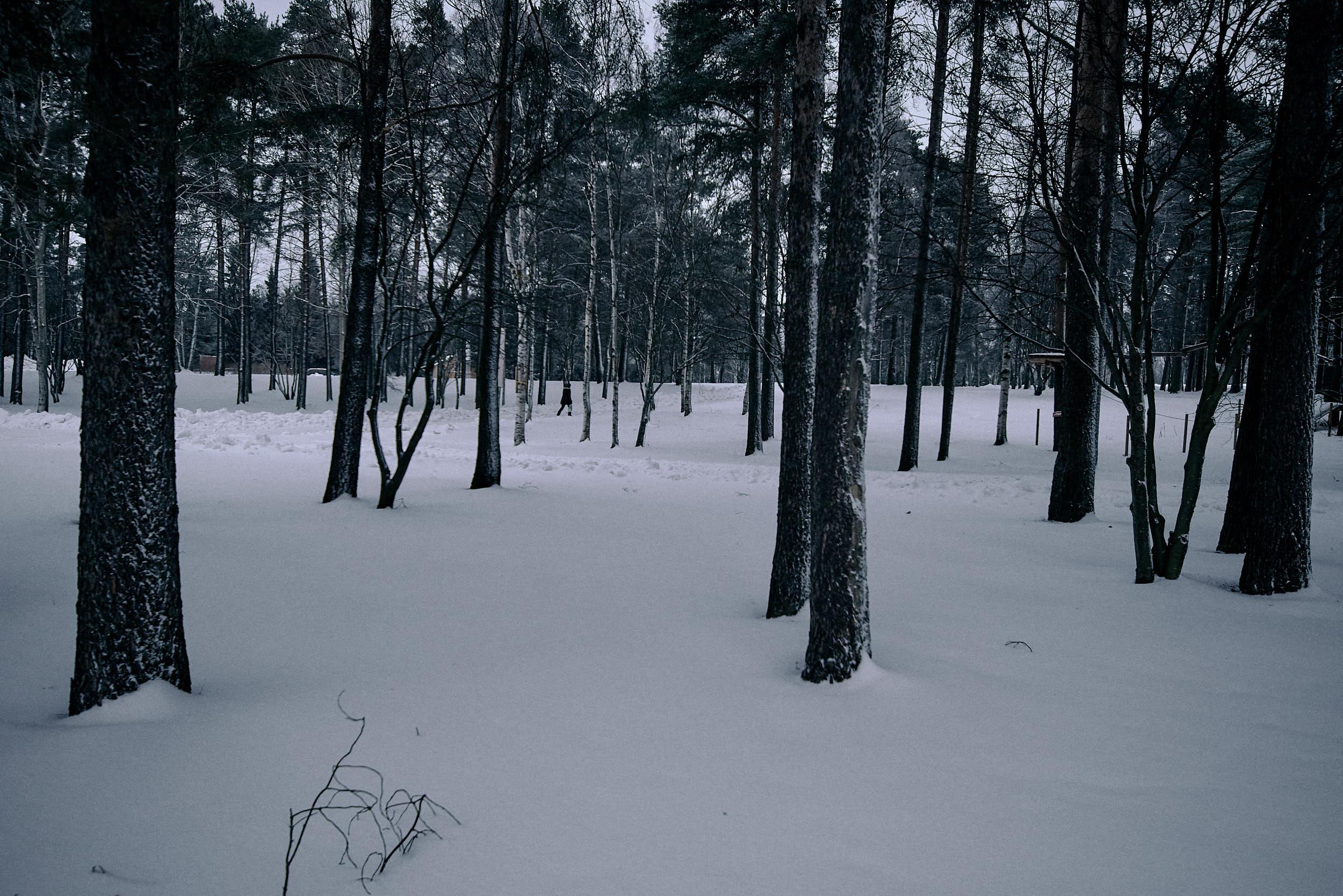 15 mm - 2019-01-05 14.00.49 - Oulu City_1.jpg